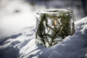 koristele jäälyhty havuilla